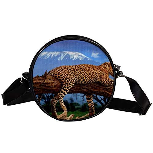 Runde Crossbody Tasche Kleine Handtasche Damen Mode Schultertaschen Messenger Bag Canvas Tasche Hüfttasche Zubehör für Frauen – Leopard Liegen auf Holz